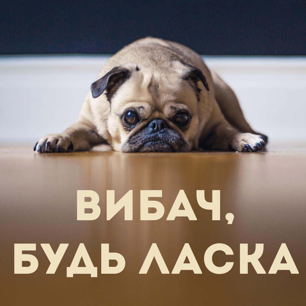 excuse me in Ukrainian