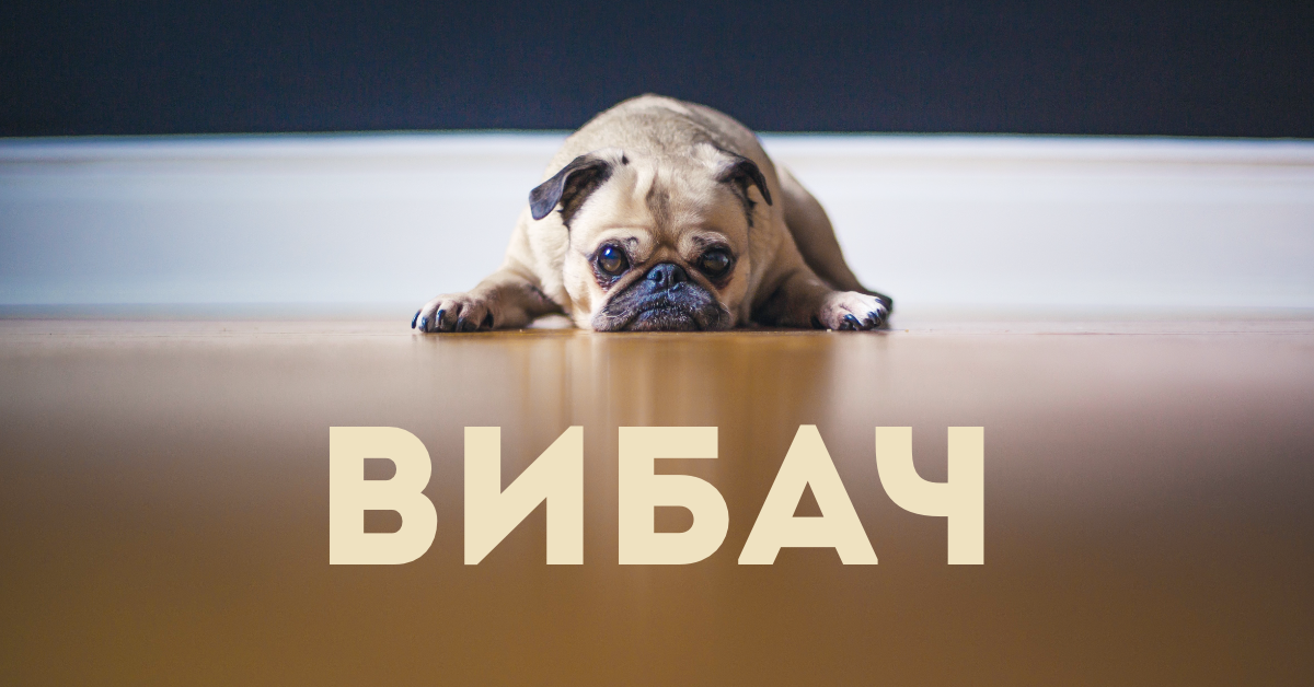How to apologize in Ukrainian: 7 ways to say sorry (with audio)