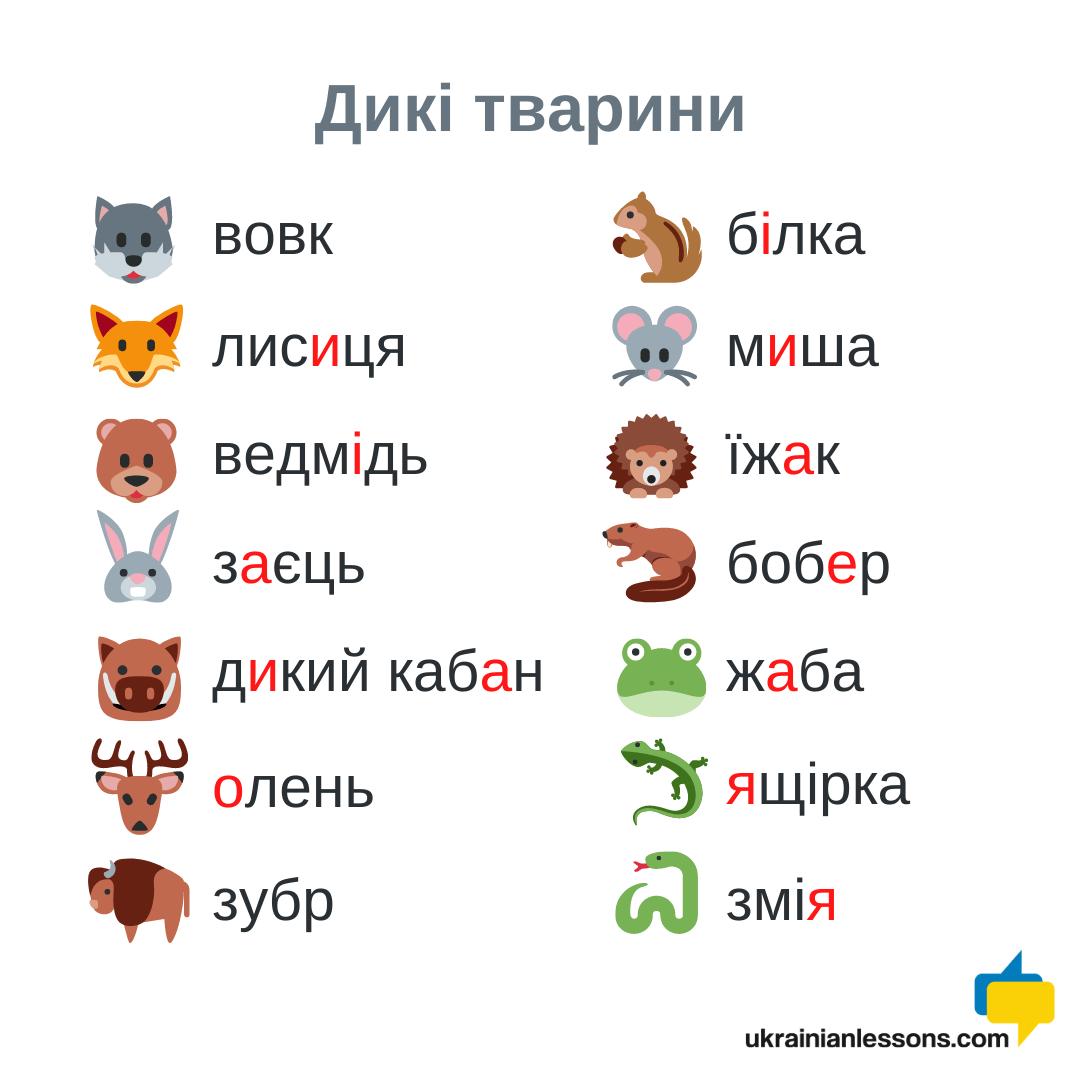 wild animals in Ukrainian